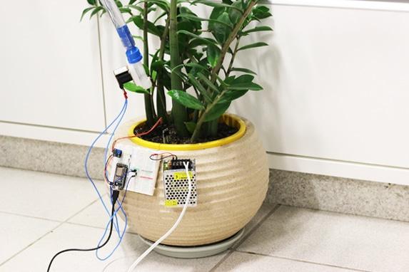Planta IoT Parte 4